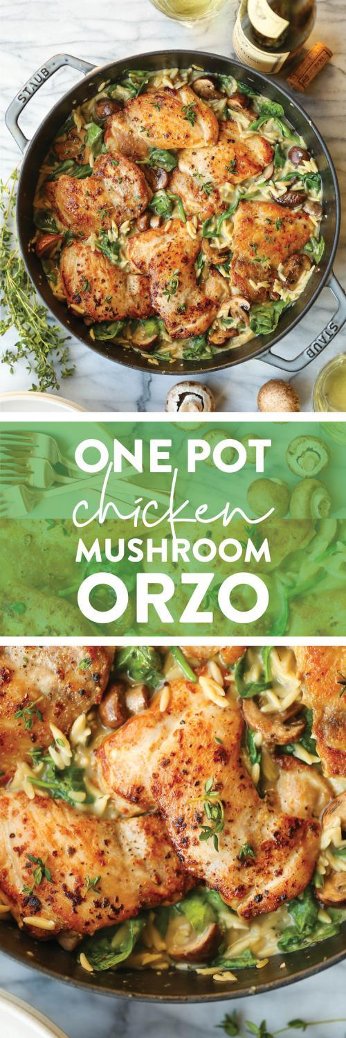 One Pot Chicken and Mushroom Orzo