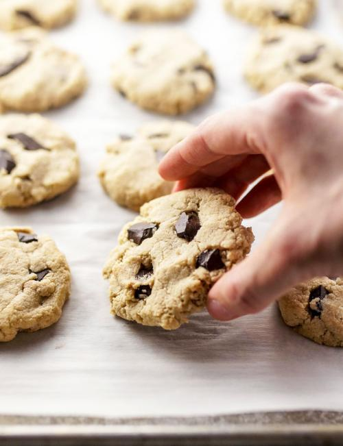 Almond Flour Cookies (with NO eggs!)